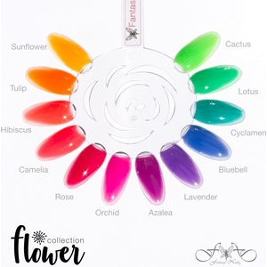 Flower Collection 15 ml